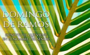 Eucaristía de la familia (domingo de Ramos). 14 de abril, 12.30h.