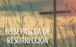 Pascua 2020. Jesuitas Pamplona (Domingo de Resurrección)